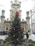 Wasserturm-Weihnachtsbaum Stockfotos