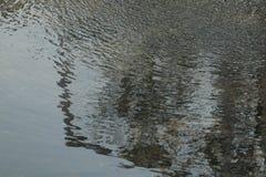 Wasserverbreitung durch Wind stockfoto