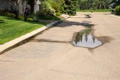 Wasserverlust mit Berieselungsanlagen-Bewässerung stockfotos