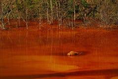 Wasserverschmutzung Stockfoto