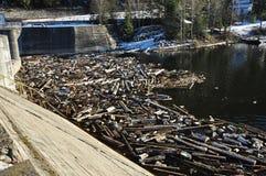 Wasserverschmutzung in einem See mit Abfall Lizenzfreie Stockbilder