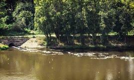 Wasserverschmutzung im Fluss Stockfoto