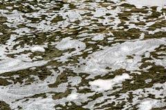 Wasserverschmutzung mit Abschaum Stockbild