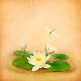 Wasserzeichnung der Seerose (Lotos) und der Libelle Lizenzfreie Stockfotografie