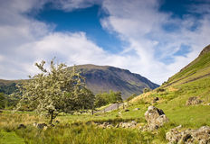 Wast Water, Lake District, UK Royalty Free Stock Photos
