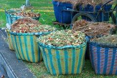 Waste Basket Stock Photo