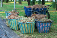 Waste Basket Royalty Free Stock Photography