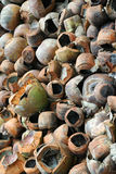 Waste Coconuts. Empty waste coconuts waiting to be burn Stock Images