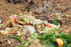 Waste composting Royalty Free Stock Images