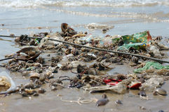 Waste nature resources, seafood source Stock Photography