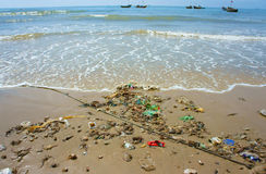 Waste nature resources, seafood source Royalty Free Stock Photo