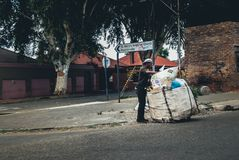 Waste picker sorting through recyclables royalty free stock photo