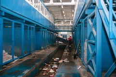 Waste processing plant. Technological process. Business for sorting and processing of waste. Waste processing plant. Technological process. Business for sorting Stock Photos