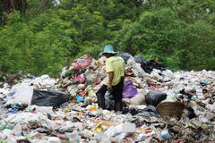 Waste separation by poor people Stock Images