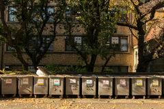 Waste sorting bins at Tokyo University. Dec 9, 2016 - Tokyo, Japan: waste sorting bins at Tokyo University. Sorting for each type of wastes, some can be recycled stock photos