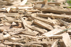 Waste wood Royalty Free Stock Images
