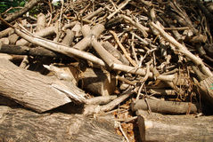 Waste wood pile Royalty Free Stock Photos