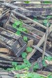 Waste wood pile Stock Photos