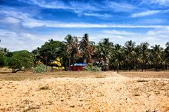 Wasteground in Goa. Area of wasteground behind beach in Candolim goa india Stock Image
