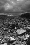 Wasteland Stock Images