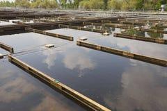 wastewater Photographie stock libre de droits