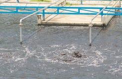 Wastewater treatment plant aerating basin. Royalty Free Stock Image