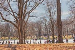 Waszyngto?ski national mall zimy spacer Stany Zjednoczone Ameryka zdjęcia royalty free