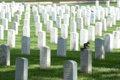 Waszyngton, DC - Czerwiec 01, 2018: Arlington Krajowy cmentarz Fotografia Royalty Free