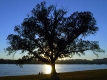Waszyngton dc park Potomac Zdjęcia Royalty Free