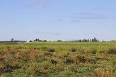 Waszyngton gospodarstwa rolnego krajobraz Fotografia Royalty Free