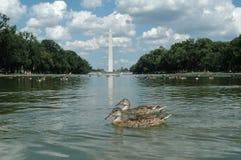Waszyngton pomnikowy fotografia stock