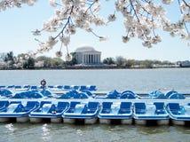 Waszyngtońscy Czereśniowi okwitnięcia i Jefferson pomnik Marzec 2010 Fotografia Stock