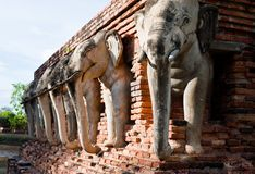 Wat张lom在历史Sukhothai附近的大象雕象 库存照片