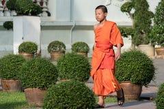 Wat的Prasing,清迈,泰国和尚 免版税库存照片