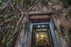Wat Bang Kung, de Banyan-boomtempel, Amphawa, Thailand royalty-vrije stock foto's