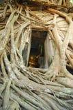 Wat Bang Kung Royalty Free Stock Photo