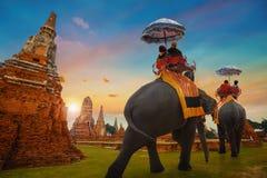 Wat Chaiwatthanaram寺庙在Ayuthaya,泰国 免版税库存照片