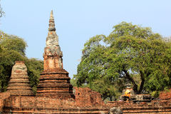 Wat Chaiwatthanaram Ayutthaya Στοκ εικόνες με δικαίωμα ελεύθερης χρήσης