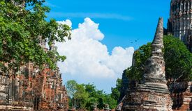 Wat Chaiwatthanaram dziejowy park w Ayutthaya prowinci o obraz royalty free