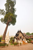 Wat Chedi Luang Stock Images