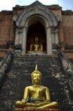 Wat Chedi Luang Royalty-vrije Stock Fotografie
