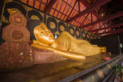 Wat Chedi Luang, a Buddhist temple in the historic centre of Chiang Mai, Thailand Stock Photo