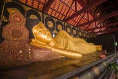 Wat Chedi Luang, um templo budista no centro histórico de Chiang Mai, Tailândia Foto de Stock