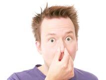 Wat is die geur? royalty-vrije stock foto