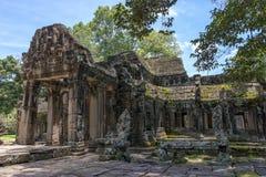 wat för ta för angkorcambodia prohm Royaltyfri Bild