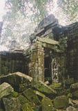 wat för tempel för angkorcambodia djungel royaltyfria bilder