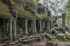 wat för tempel för ta för angkorcambodia prohm Royaltyfria Foton