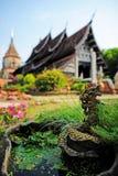 Wat Lok Molee in Chiangmai Lizenzfreie Stockbilder