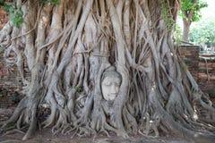 Wat Maha That Stock Afbeeldingen