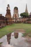 Wat Maha That, Ayutthaya, Tailândia Fotos de Stock Royalty Free